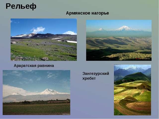 Рельеф Армянское нагорье Араратская равнина Зангезурский хребет