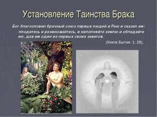 Установление Таинства Брака Бог благословил брачный союз первых людей в Раю и