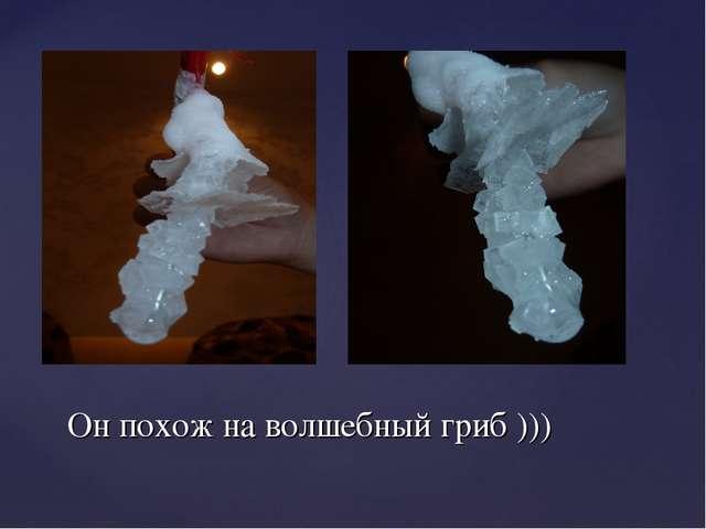 Он похож на волшебный гриб )))