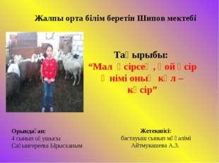 """Жалпы орта білім беретін Шипов мектебі Тақырыбы: """"Мал өсірсең, қой өсір Өнімі"""