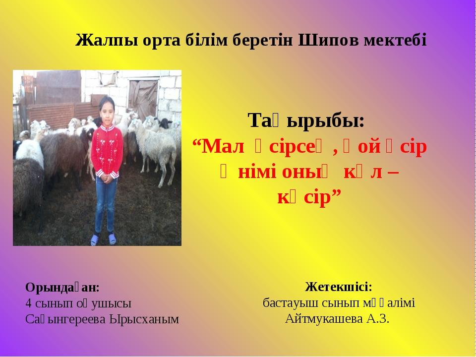 """Жалпы орта білім беретін Шипов мектебі Тақырыбы: """"Мал өсірсең, қой өсір Өнімі..."""
