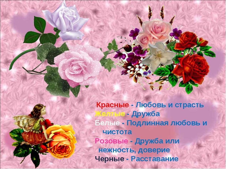 Красные - Любовь и страсть Желтые - Дружба Белые - Подлинная любовь и чистот...
