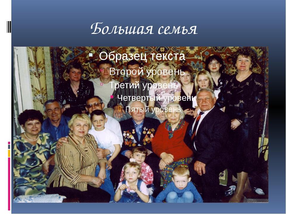 Большая семья