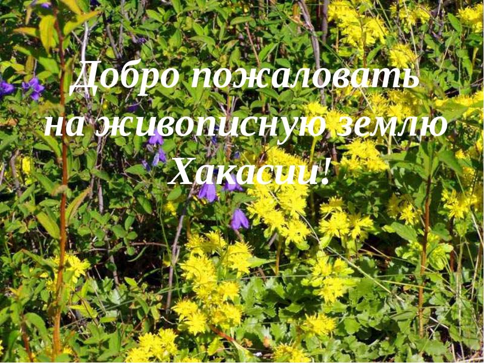 Добро пожаловать на живописную землю Хакасии!