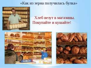 «Как из зерна получилась булка» Хлеб везут в магазины. Покупайте и кушайте!