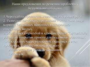 Наши предложения по решению проблемы с бездомными собаками. Через сайты предл