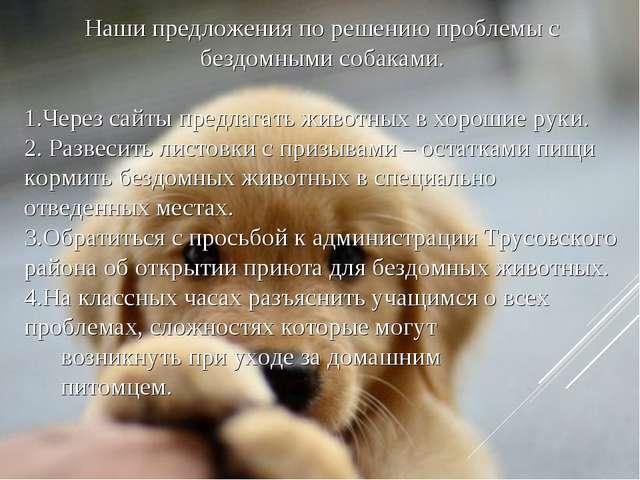 Наши предложения по решению проблемы с бездомными собаками. Через сайты предл...