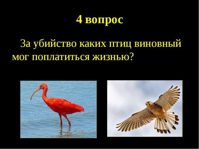 4 вопрос За убийство каких птиц виновный мог поплатиться жизнью?
