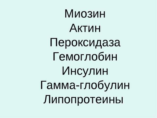 Миозин Актин Пероксидаза Гемоглобин Инсулин Гамма-глобулин Липопротеины