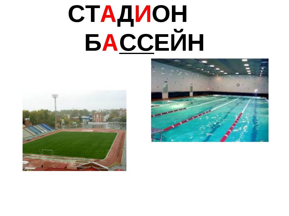 СТАДИОН БАССЕЙН