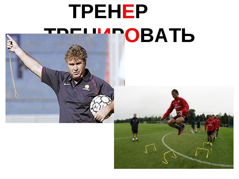ТРЕНЕР ТРЕНИРОВАТЬ