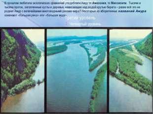 В прошлом любители экзотических сравнений уподобляли Амур то Амазонке, то Ми