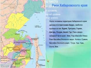 Около половины территории Хабаровского края дренируется притоками Амура, наи