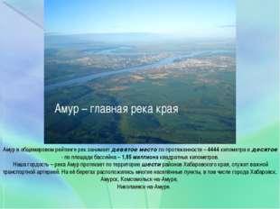 Амур – главная река края Амур в общемировом рейтинге рек занимает девятое ме