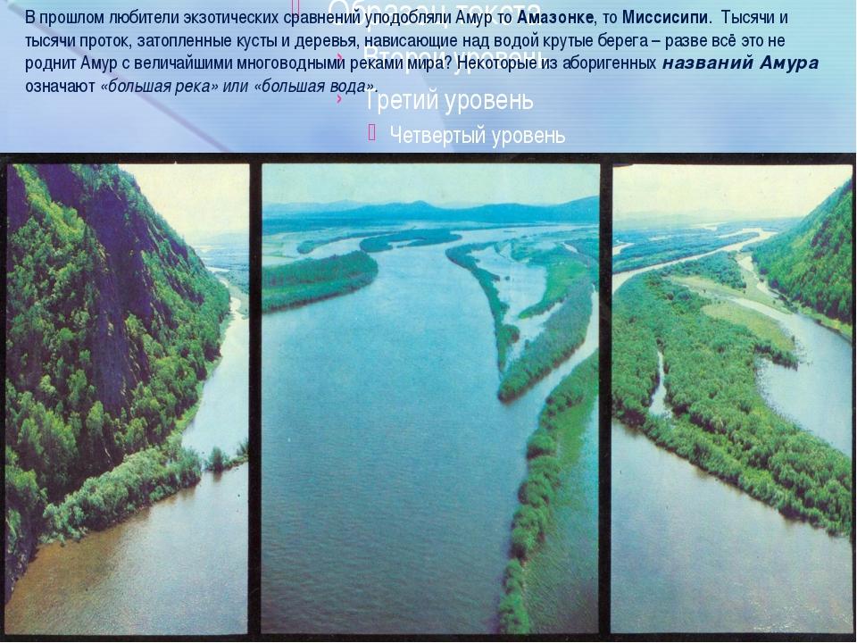 В прошлом любители экзотических сравнений уподобляли Амур то Амазонке, то Ми...
