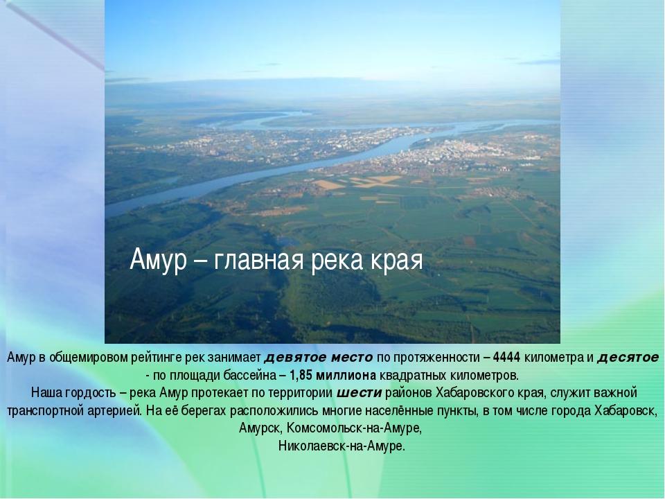 Амур – главная река края Амур в общемировом рейтинге рек занимает девятое ме...