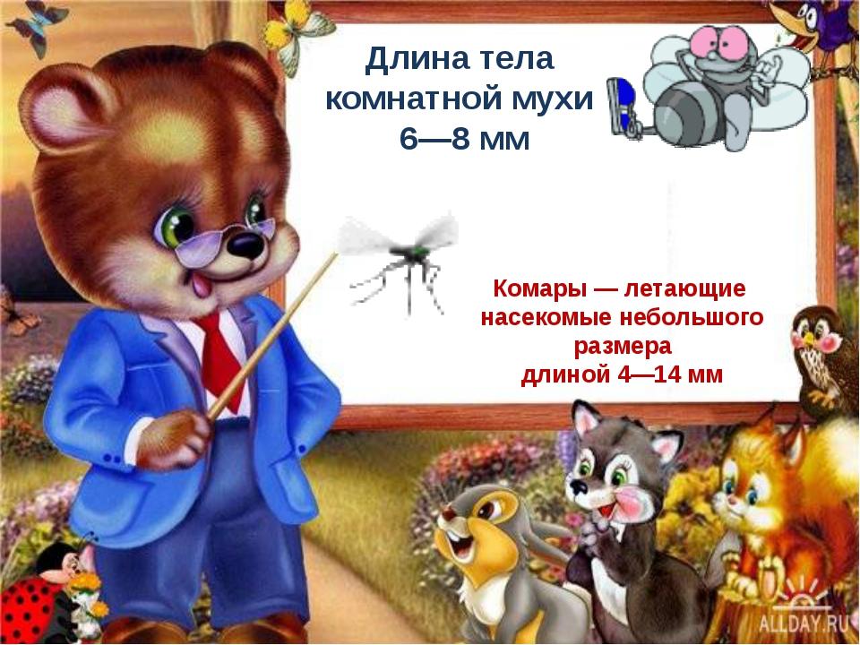 Длина тела комнатной мухи 6—8 мм Комары — летающие насекомые небольшого разм...