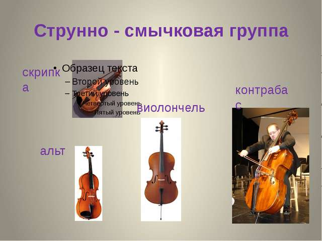 Струнно - смычковая группа альт контрабас скрипка виолончель