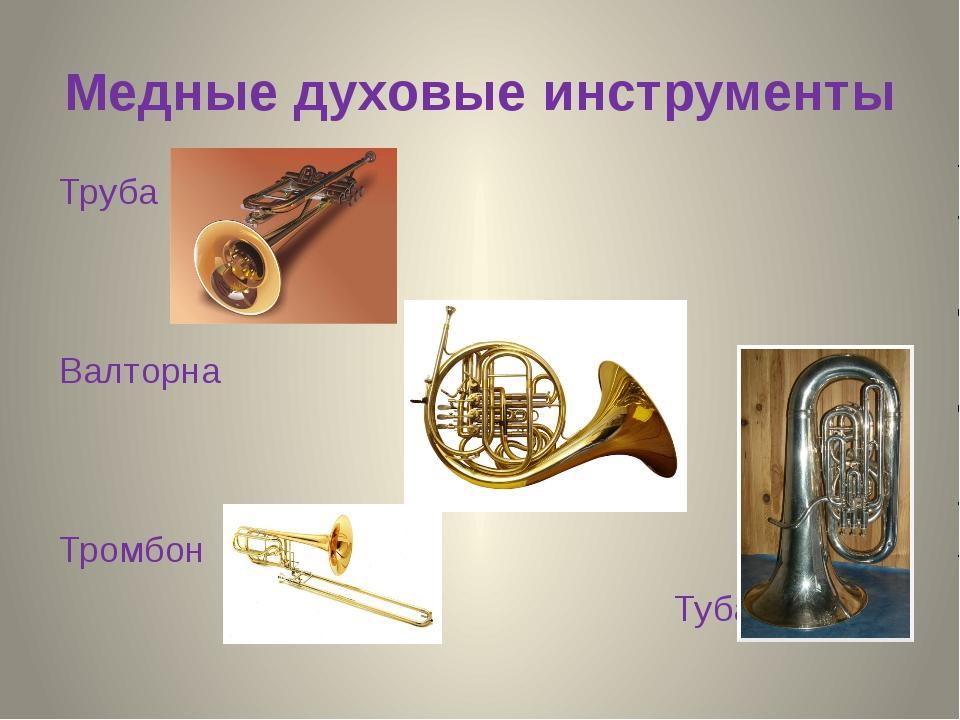 Медные духовые инструменты Труба Валторна Тромбон Туба