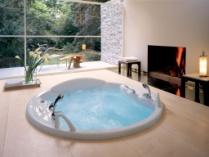 http://www.wurku.com/wp-content/uploads/2014/04/Modern-jacuzzi-bathroom-design-image.jpg