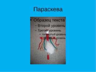Симеон Столпник