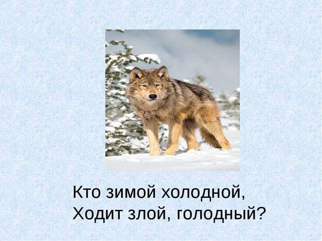 Кто зимой холодной, Ходит злой, голодный?