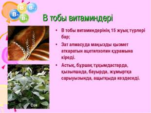 В тобы витаминдері В тобы витаминдерінің 15 жуық түрлері бар; Зат алмасуда м