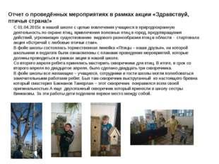 Отчет о проведённых мероприятиях в рамках акции «Здравствуй, птичья страна!»