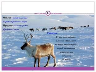 ОБЪЕКТ, ПРЕДМЕТ, ГИПОТЕЗА исследования: Объект : олени в сказках народов Кра