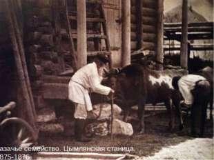 Казачье семейство. Цымлянская станица. 1875-1876