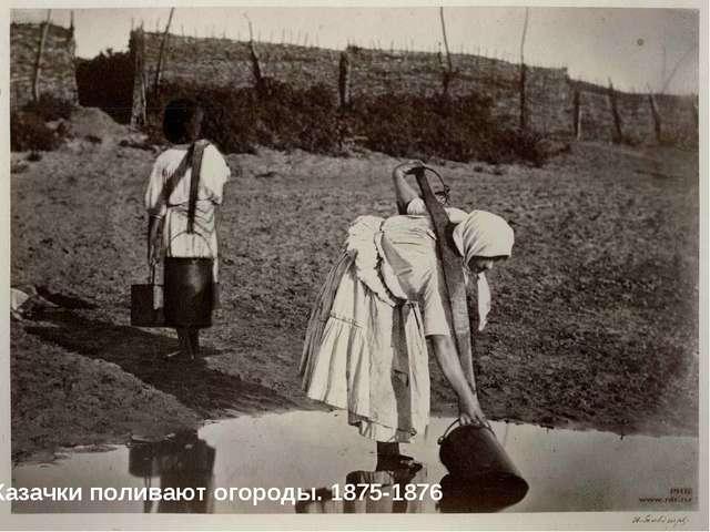 Казачки поливают огороды. 1875-1876