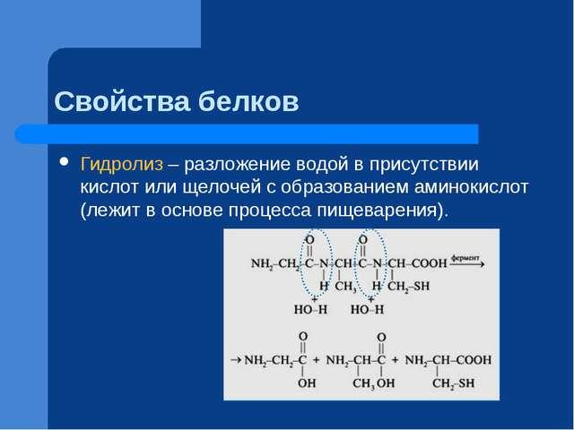 Свойства белков Гидролиз – разложение водой в присутствии кислот или щелочей...