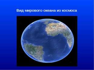 Вид мирового океана из космоса