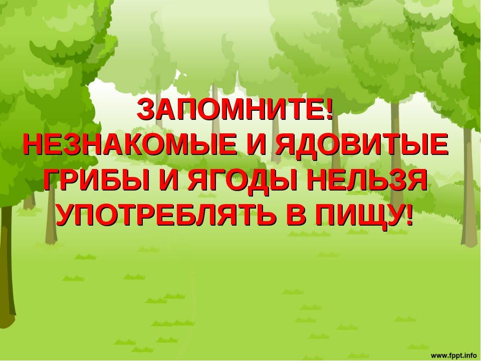 ЗАПОМНИТЕ! НЕЗНАКОМЫЕ И ЯДОВИТЫЕ ГРИБЫ И ЯГОДЫ НЕЛЬЗЯ УПОТРЕБЛЯТЬ В ПИЩУ!