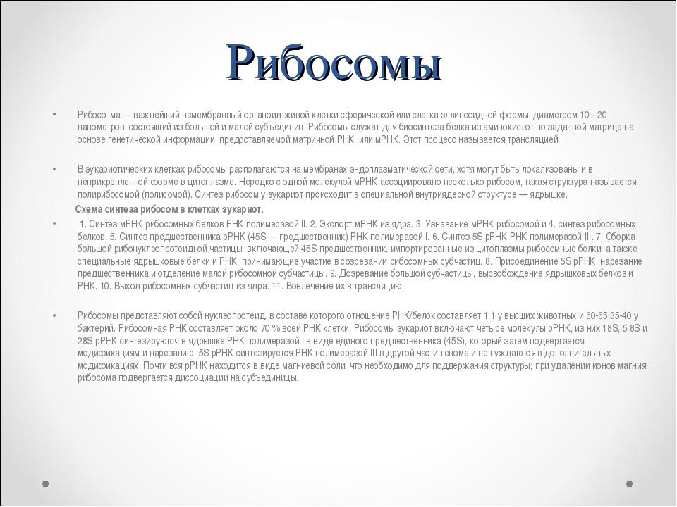 Рибосомы Рибосо́ма — важнейший немембранный органоид живой клетки сферической...