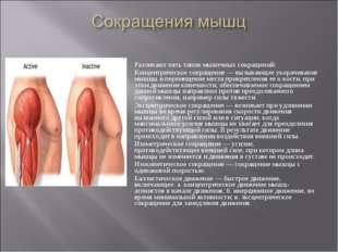 Различают пять типов мышечных сокращений: Концентрическое сокращение— вызыва