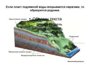 Если пласт подземной воды вскрывается оврагами, то образуются родники.