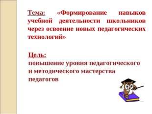Тема: «Формирование навыков учебной деятельности школьников через освоение но