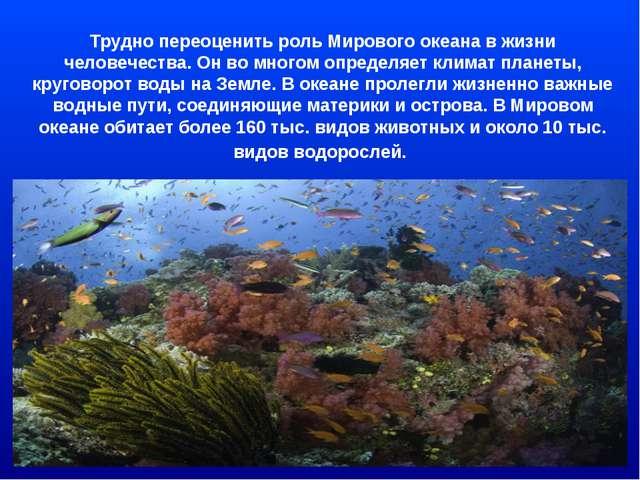 Трудно переоценить роль Мирового океана в жизни человечества. Он во многом оп...
