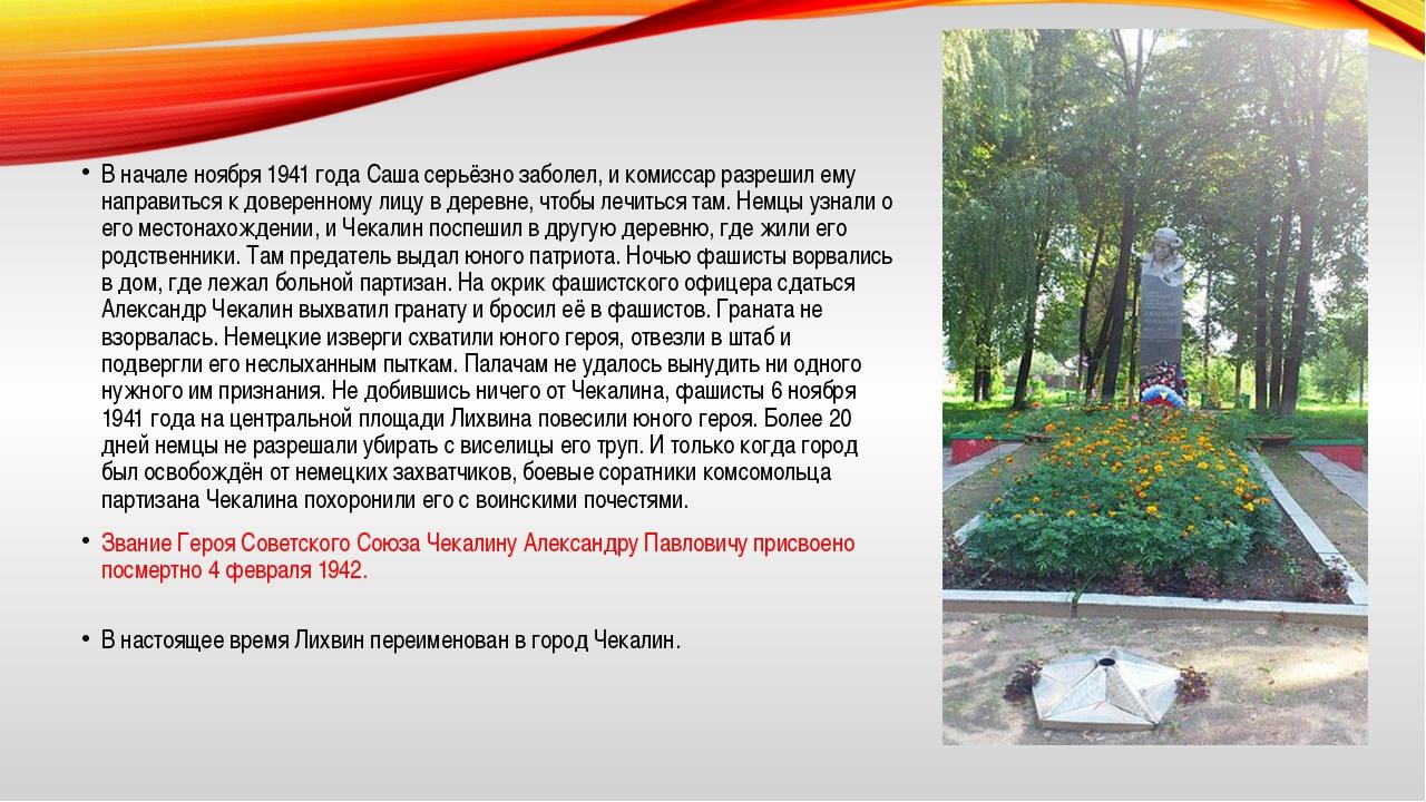 В начале ноября 1941 года Саша серьёзно заболел, и комиссар разрешил ему напр...
