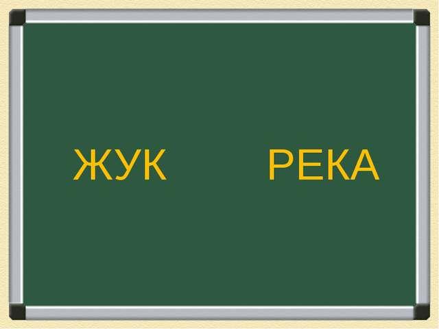ЖУК РЕКА