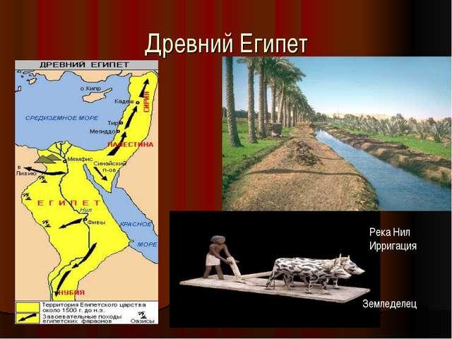 Древний Египет Река Нил Ирригация Земледелец