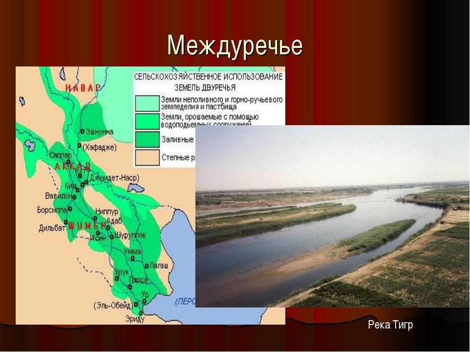 Междуречье Река Тигр