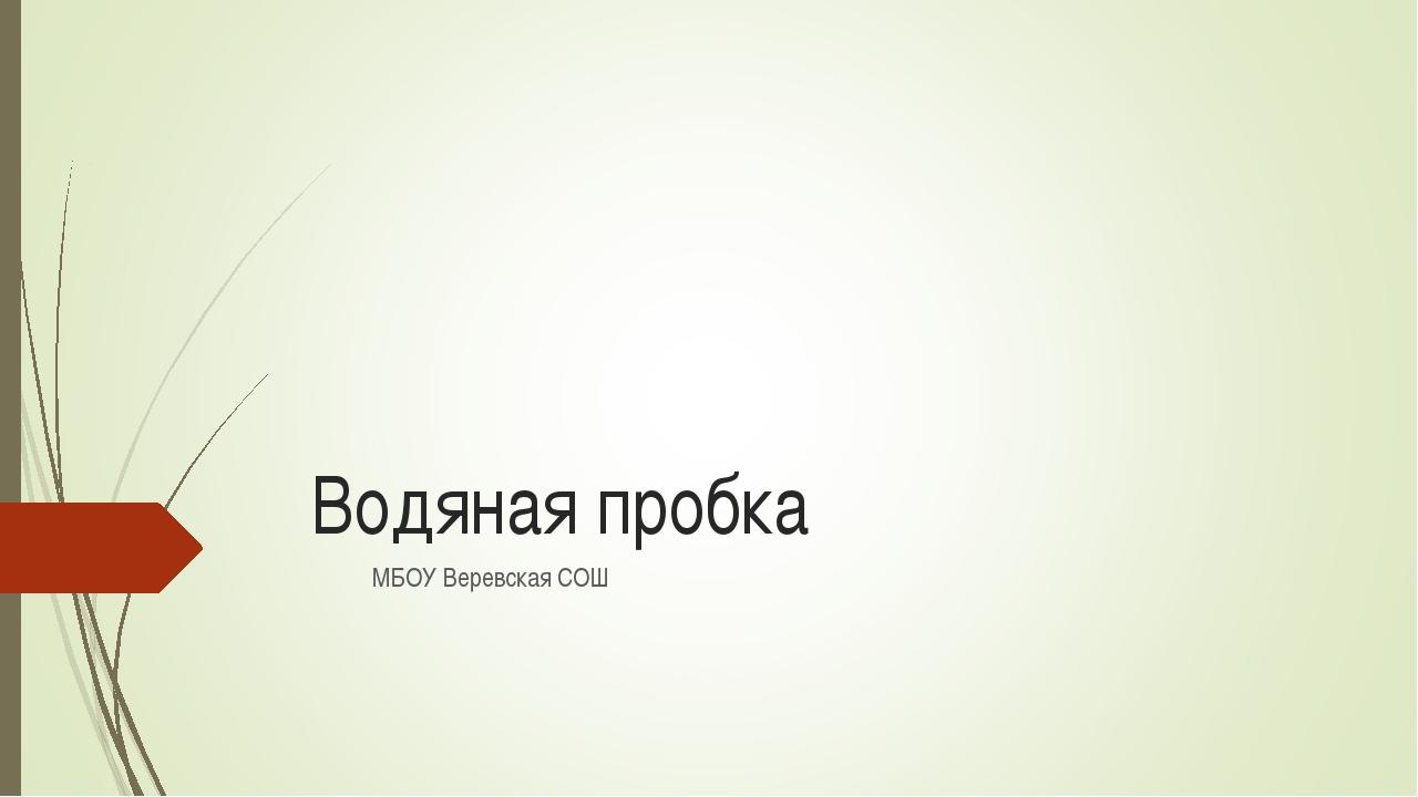 Водяная пробка МБОУ Веревская СОШ