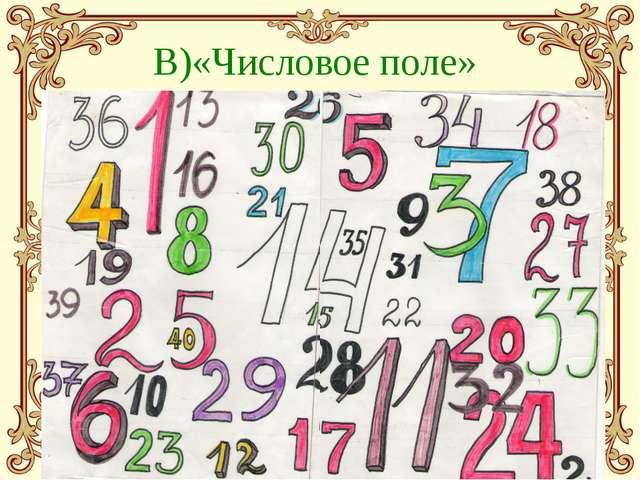 В)«Числовое поле»