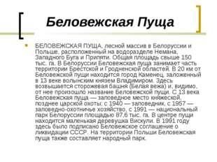 Беловежская Пуща БЕЛОВЕЖСКАЯ ПУЩА, лесной массив в Белоруссии и Польше, распо