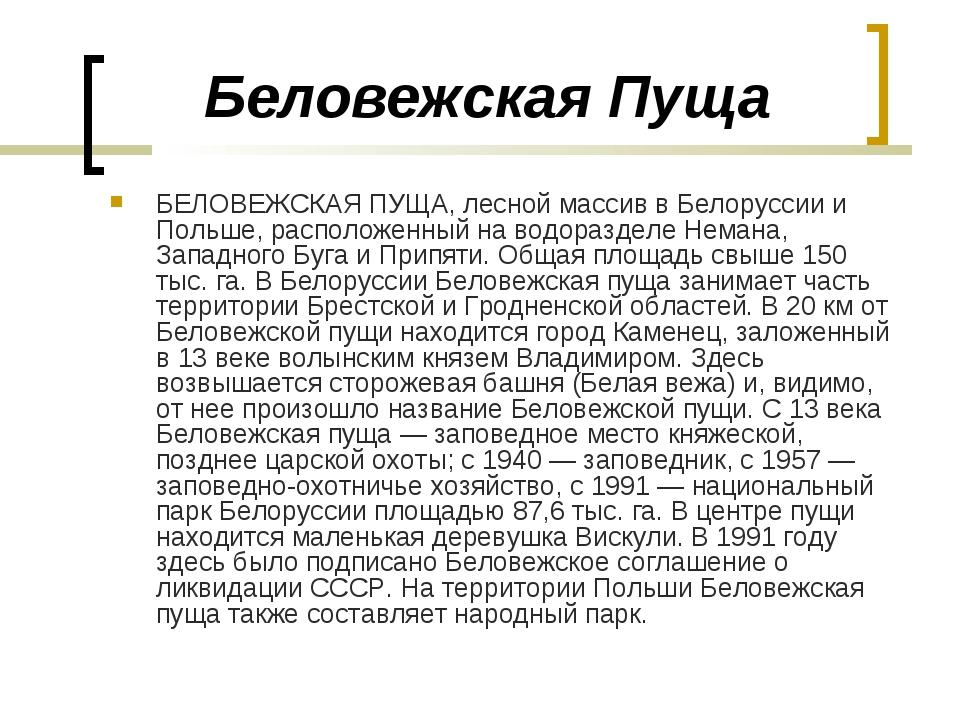 Беловежская Пуща БЕЛОВЕЖСКАЯ ПУЩА, лесной массив в Белоруссии и Польше, распо...