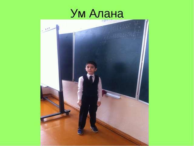 Ум Алана