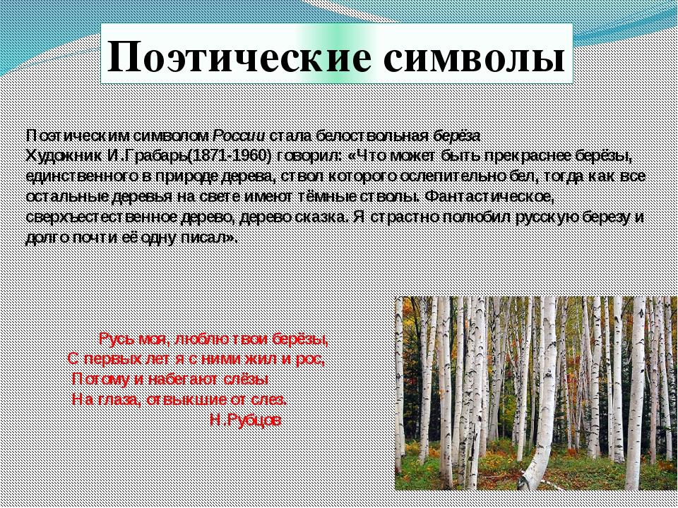 Поэтическим символом России стала белоствольная берёза Художник И.Грабарь(187...