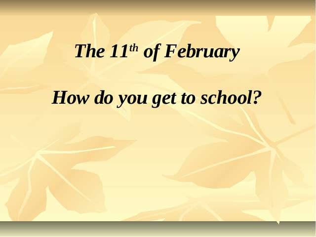 The 11th of February How do you get to school?
